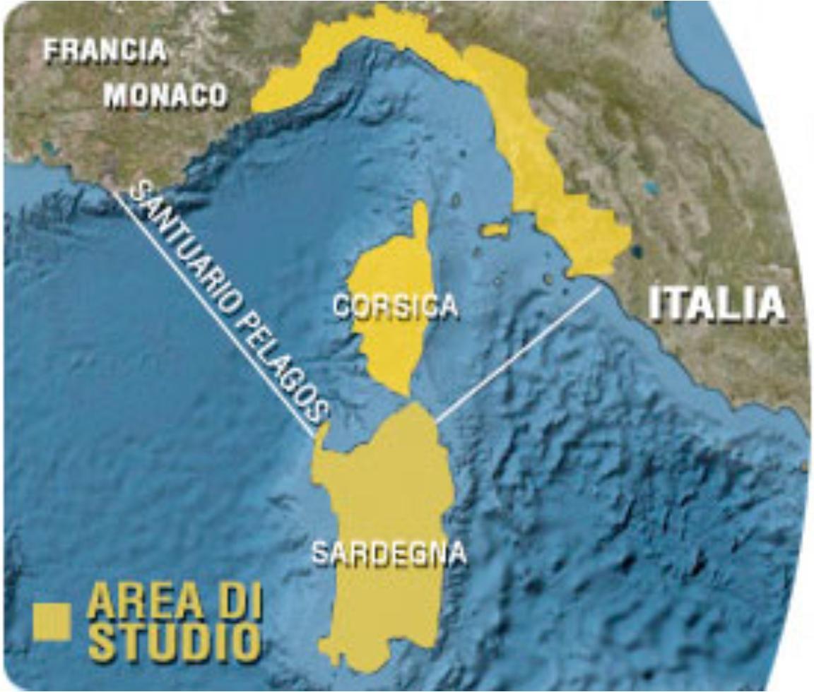Cartina Pelago