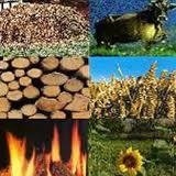INCONTRO PUBBLICO IL 3 DICEMBRE 2012 PER FARE IL PUNTO SUL PROGETTO DI CENTRALE A BIOGAS