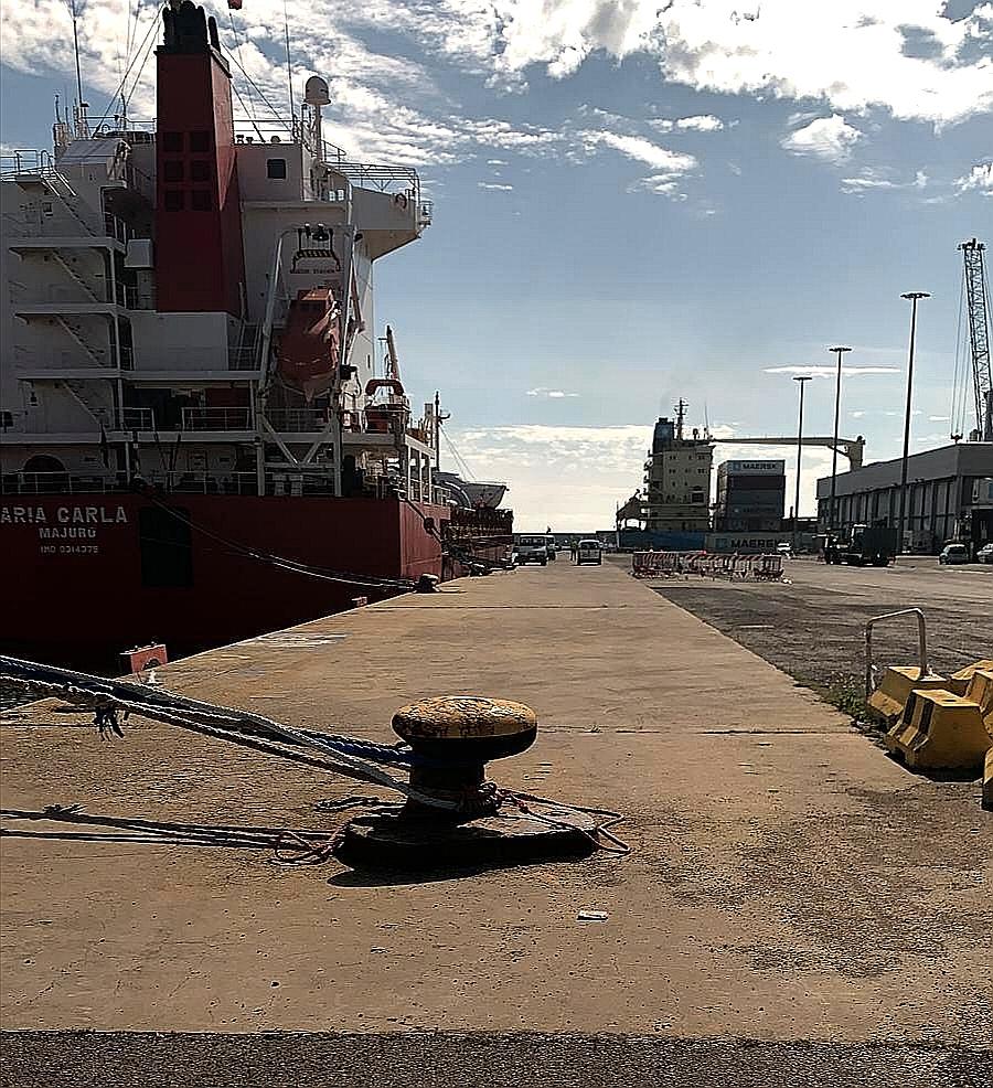 Porto di Civitavecchia, traffici commerciali durante l'emergenza sanitaria. Video conferenza questo pomeriggio con le imprese