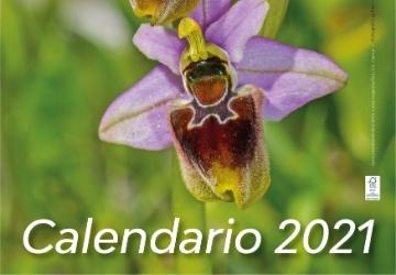 In arrivo il nuovo calendario 2021 del Parco