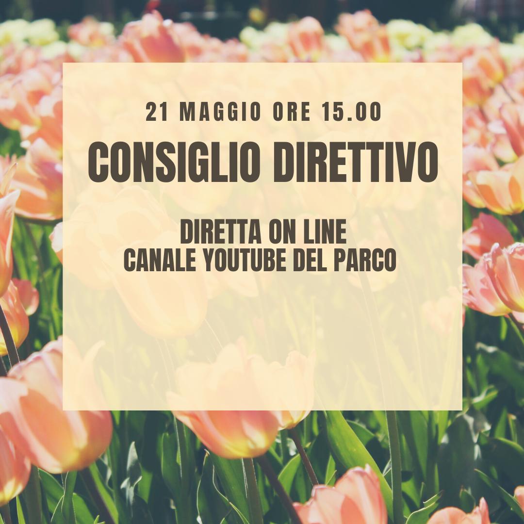 Consiglio Direttivo 21 maggio - diretta Youtube