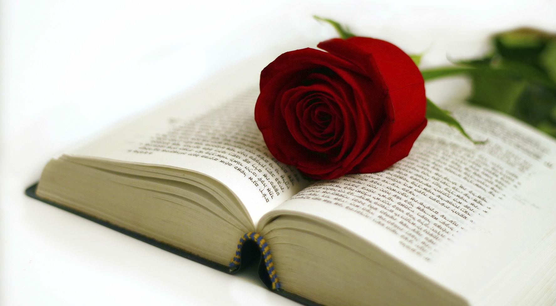 23 Aprile 2021 Libri & Rose