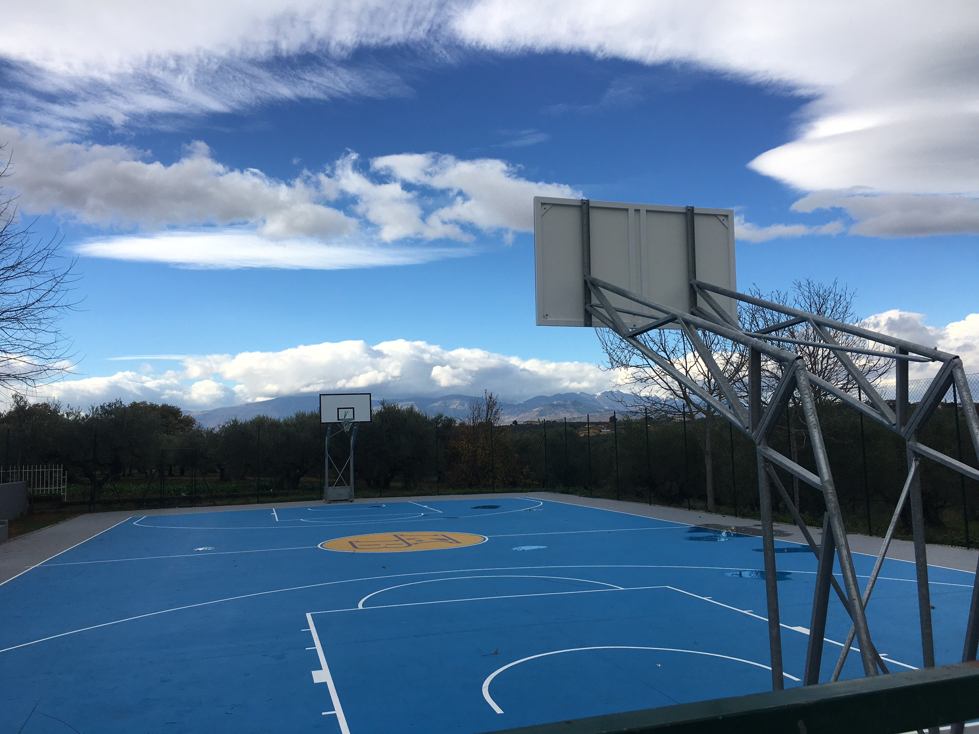 basket cerratina